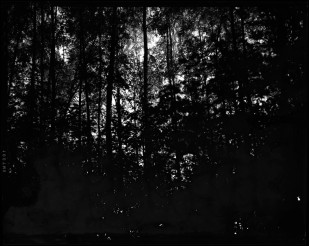 """Äänen kantaja, Cord Carrier"" 2010, B&W photograph, pigment print, 100x130cm, edition 1/5 ©Veli Granö"