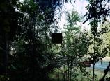 Auringonpimennyksiä/ Eclipses of the sun, Silk screen on photograph,