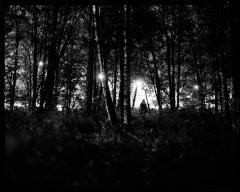 "Keijun valitus, Moan of a Sprite"", The Prophet, 2010, B&W photograph, pigment print, 100x85cm (inc frames) , editio 1/5"