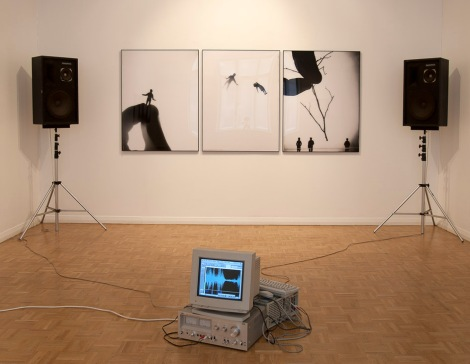 Masters, Perfect World. Installation view: Hippolyte Gallery, Helsinki, Finland, 2006.
