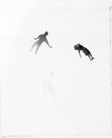 Masters, Perfect World. Photogram. ©Veli Granö 2006